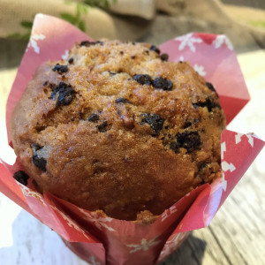 Unger's Chocolate Chip Muffins