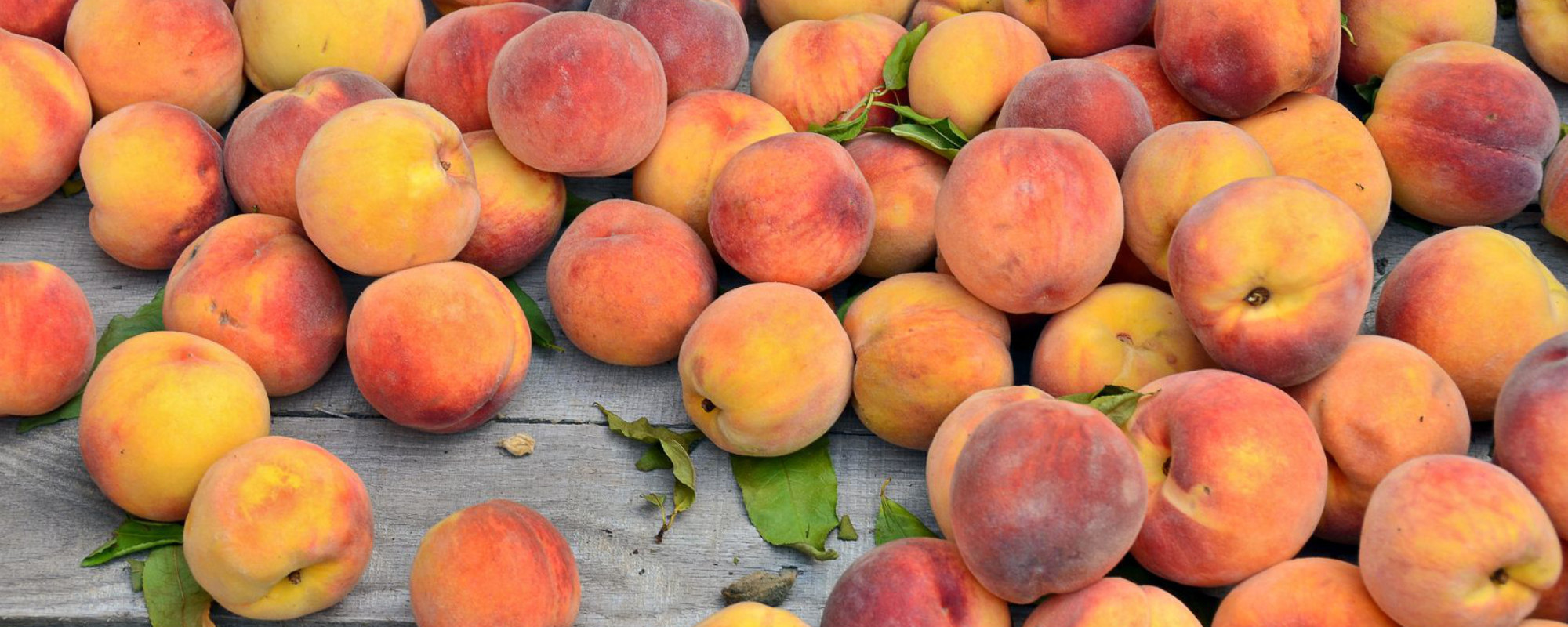 Ungers Market - Peaches